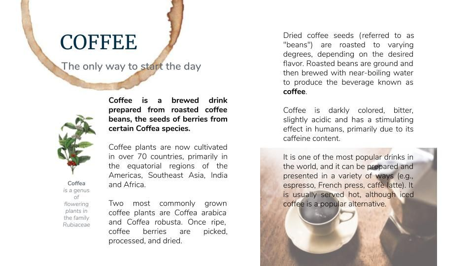 Coffee article (*) - image 2 - student project