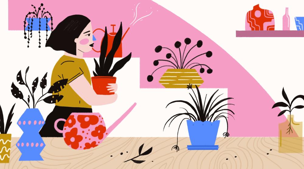 Plant Shop - image 1 - student project