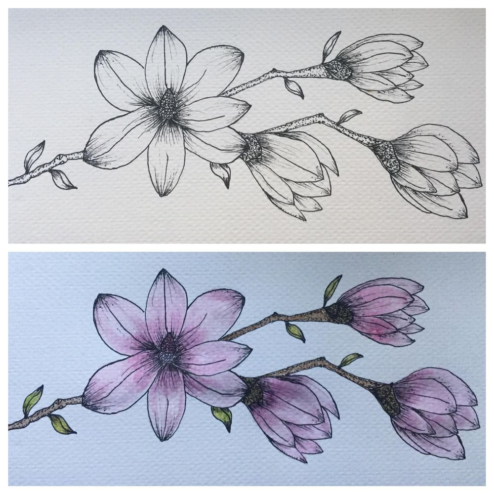 Pink Magnolia - image 1 - student project