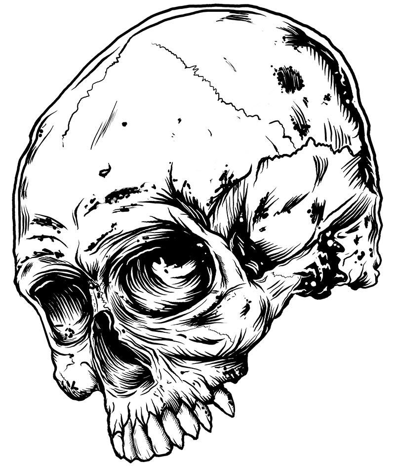Skull - image 2 - student project