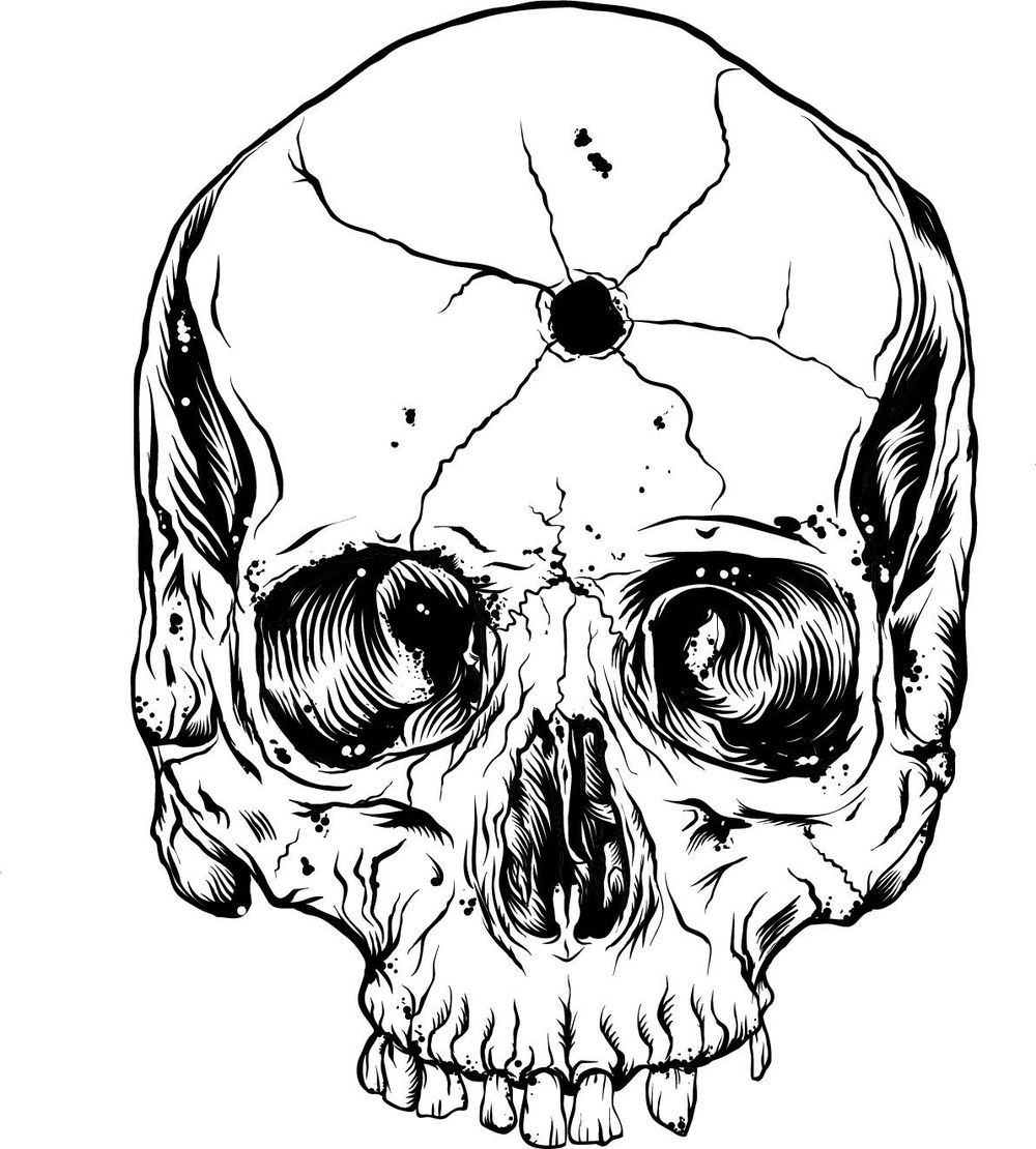Skull - image 5 - student project