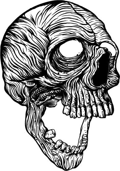 Skull - image 8 - student project