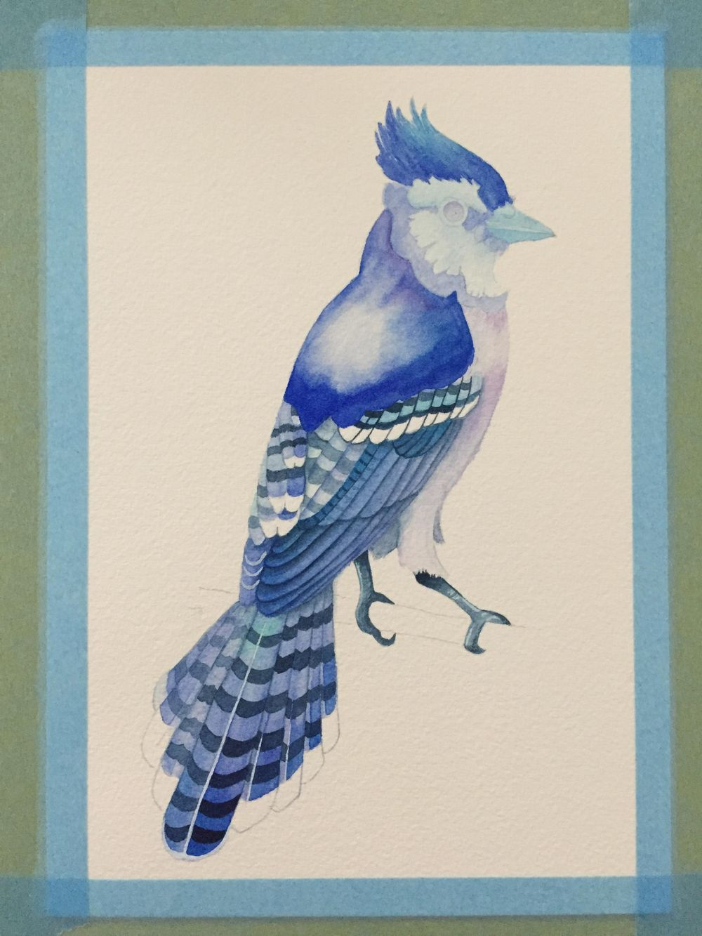 Watercolour Blue Jay - image 4 - student project