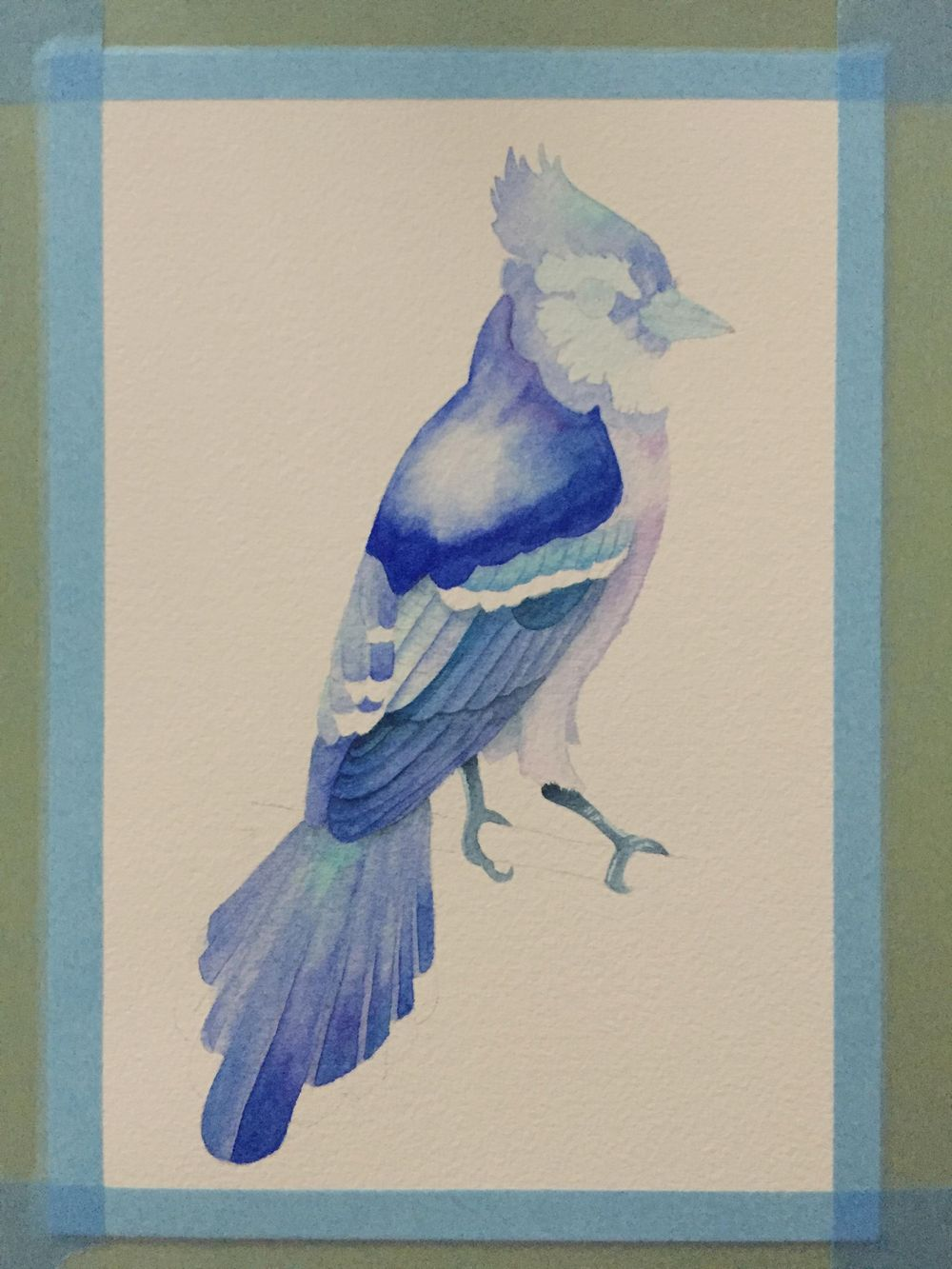 Watercolour Blue Jay - image 3 - student project