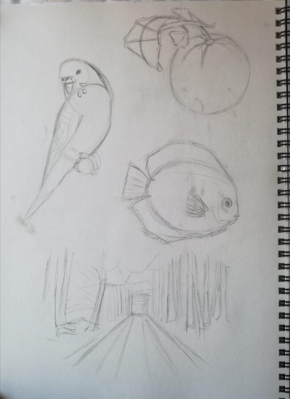 Basic Drawing Skills - image 15 - student project