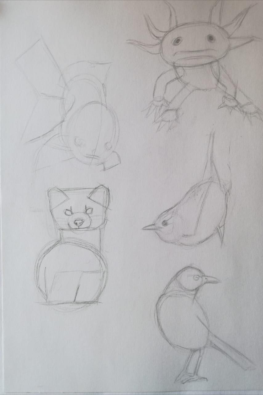 Basic Drawing Skills - image 13 - student project