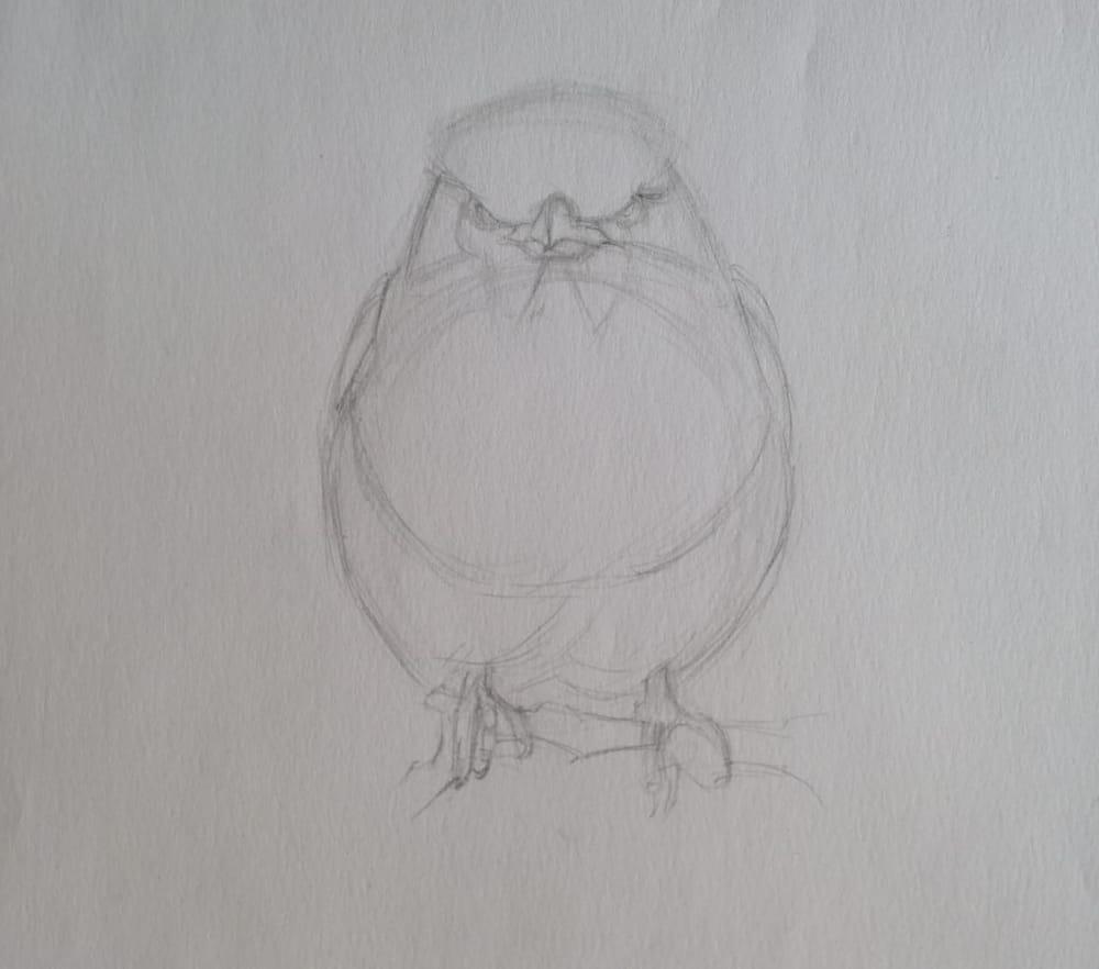 Basic Drawing Skills - image 18 - student project