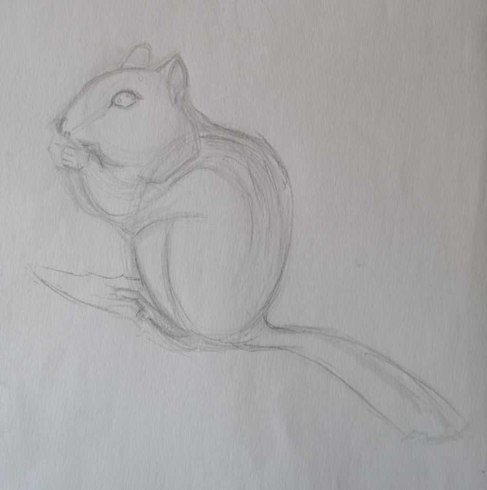Basic Drawing Skills - image 16 - student project