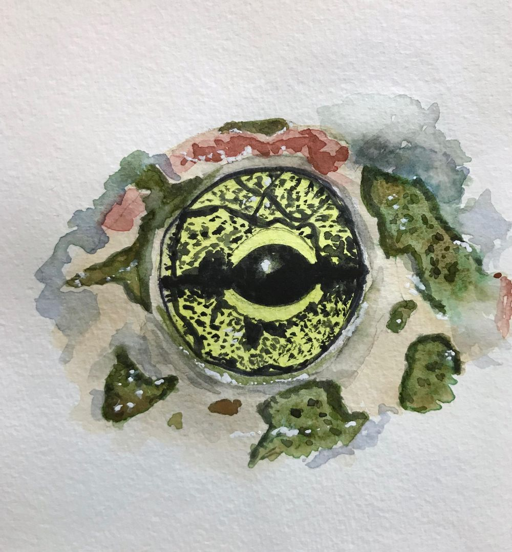 Eye practice - image 3 - student project