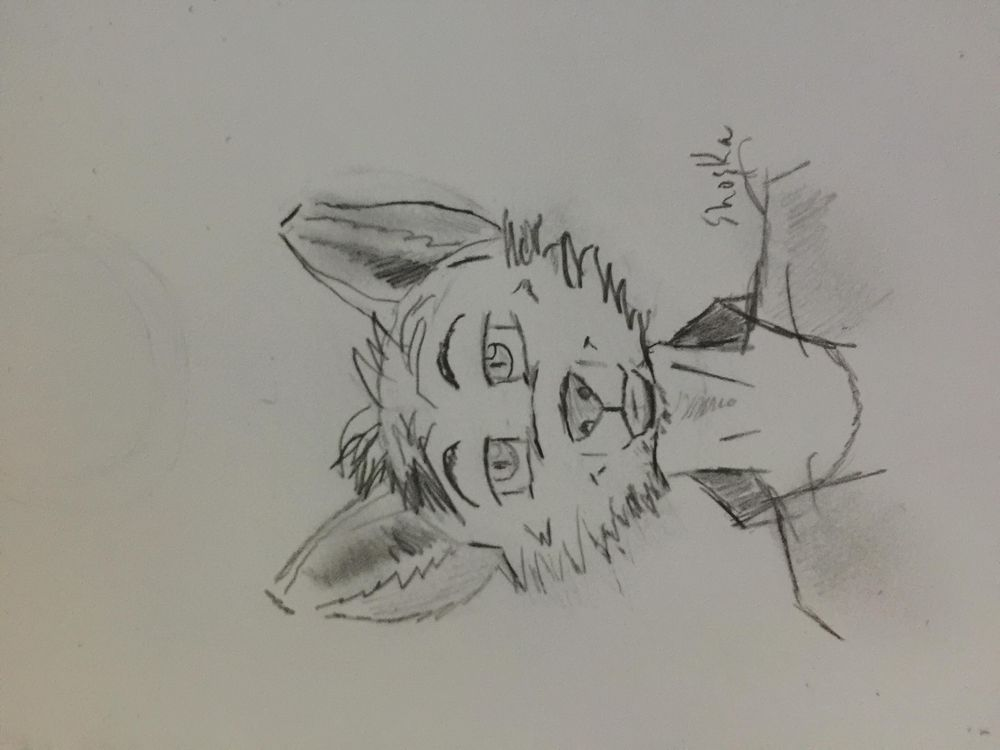 Furry Art - image 3 - student project