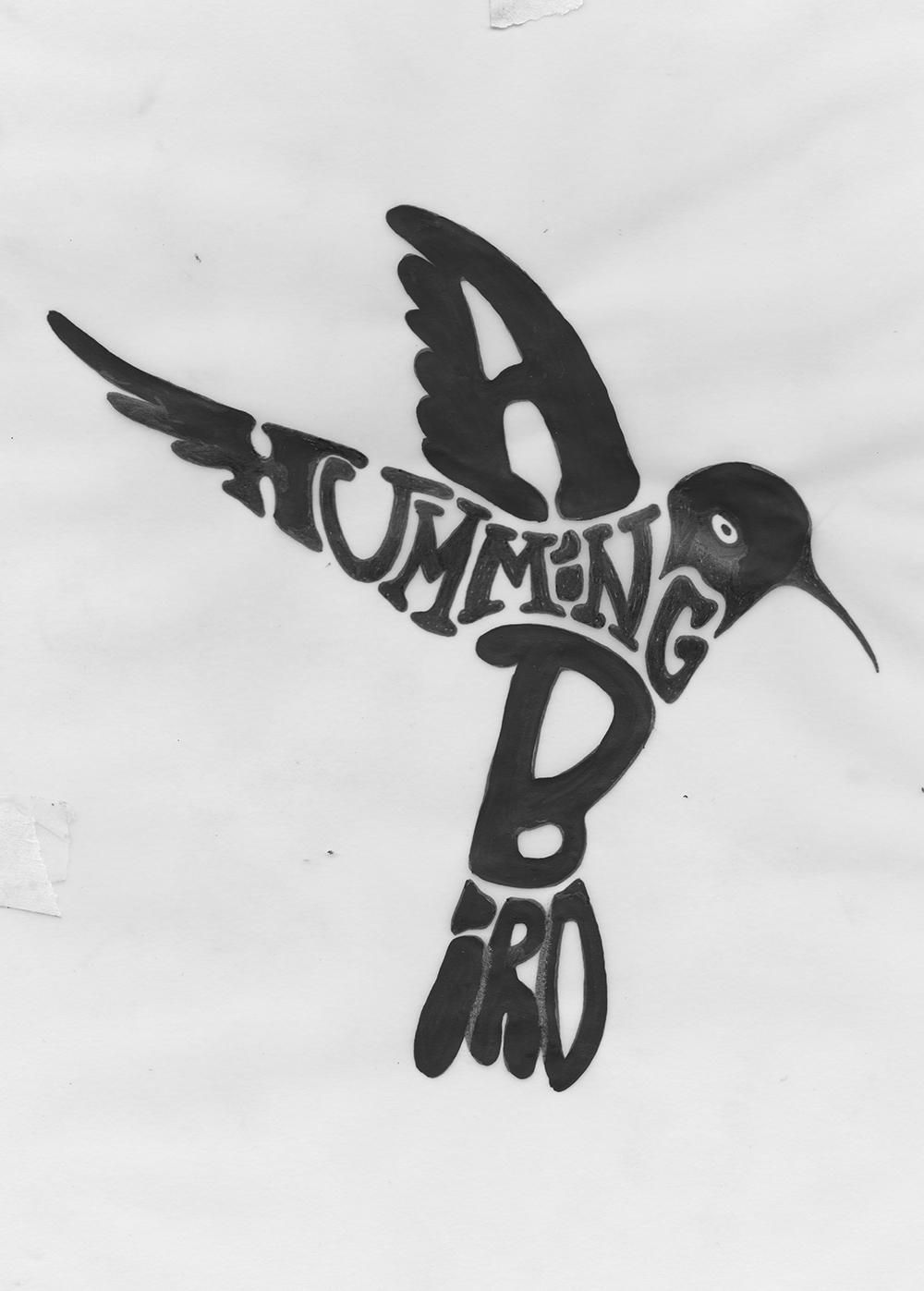A Hummingbird - image 2 - student project