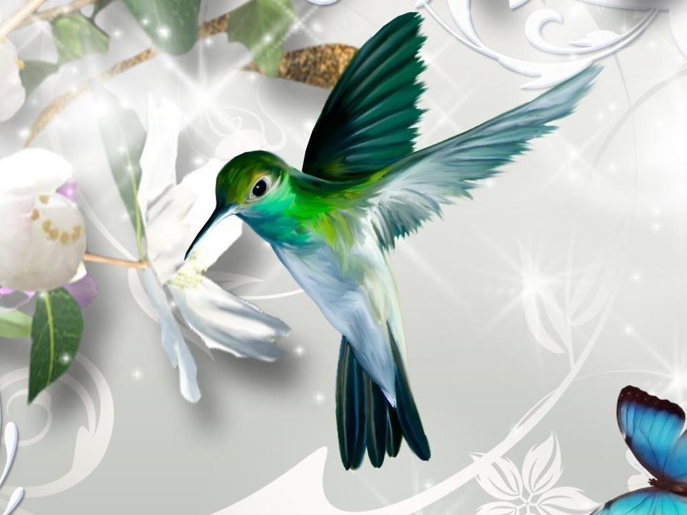 A Hummingbird - image 1 - student project