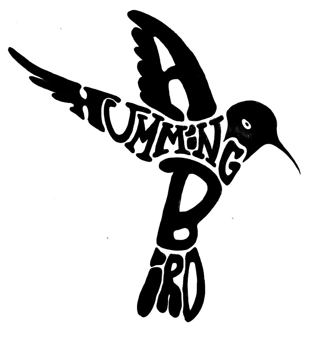 A Hummingbird - image 3 - student project