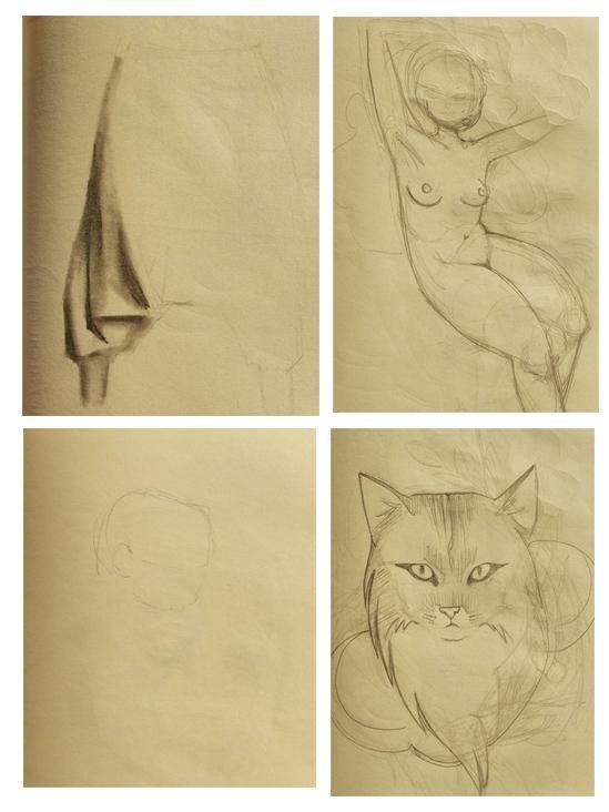 fedecattadraws before and after - image 1 - student project