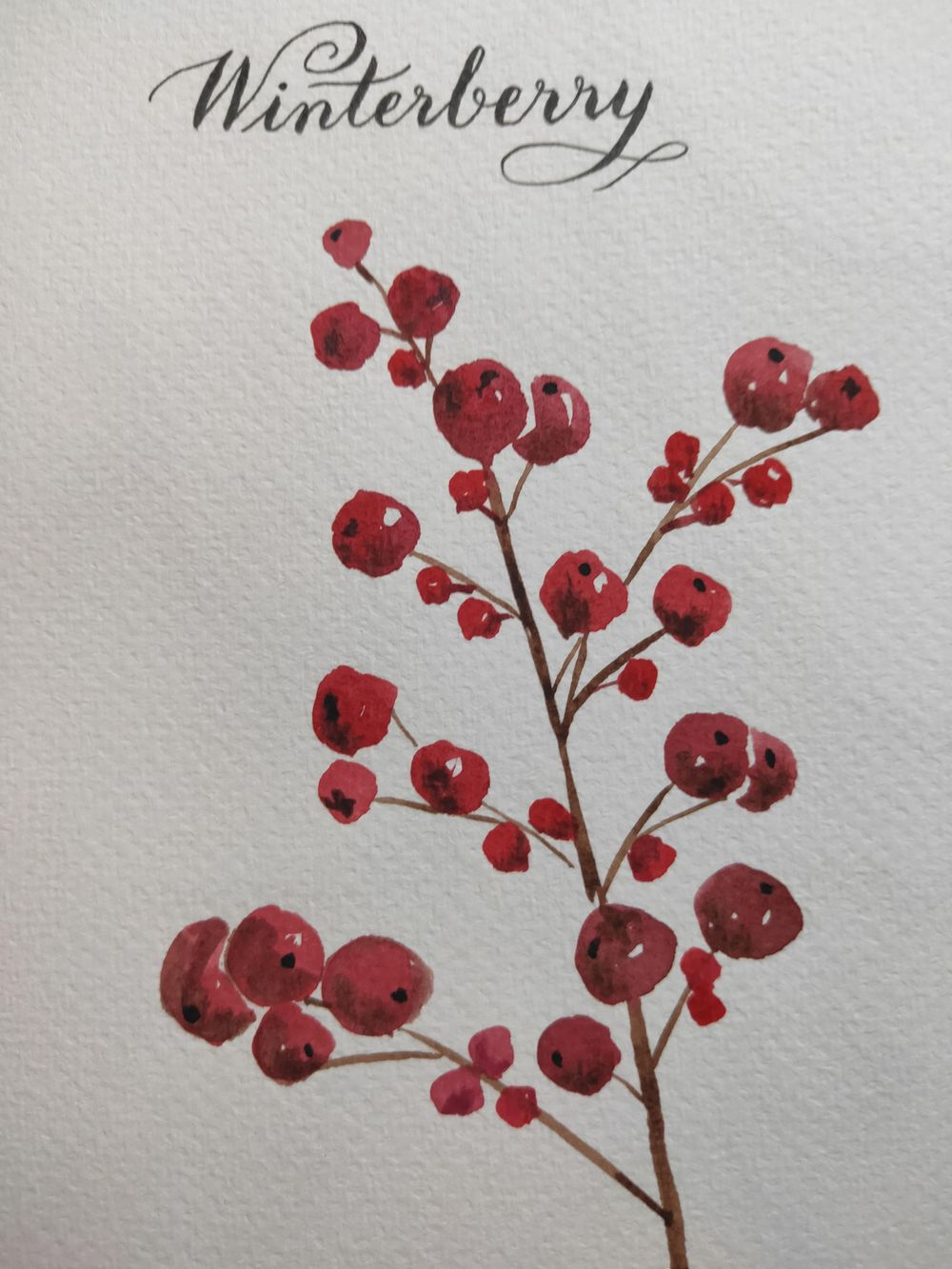 Loose Winter/Christmas Florals - image 5 - student project