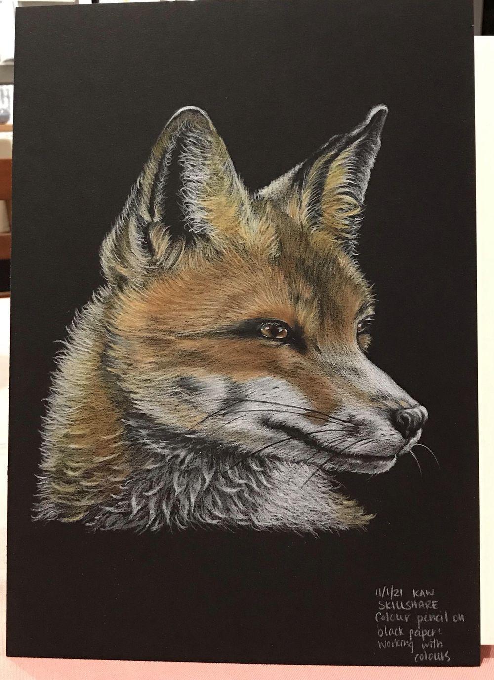 Foxy Loxy - image 1 - student project