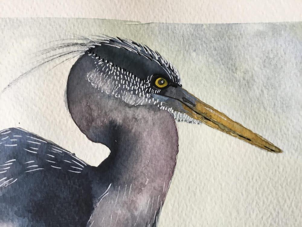 Vivid heron - image 6 - student project