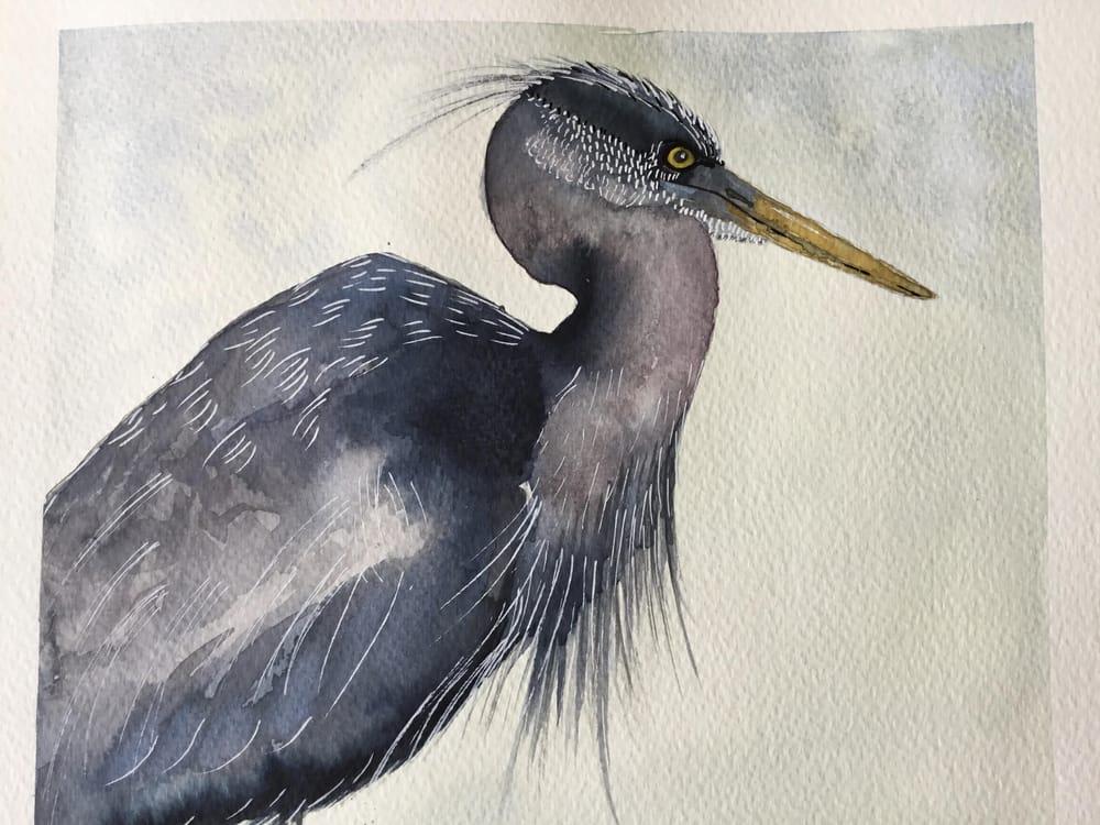 Vivid heron - image 4 - student project