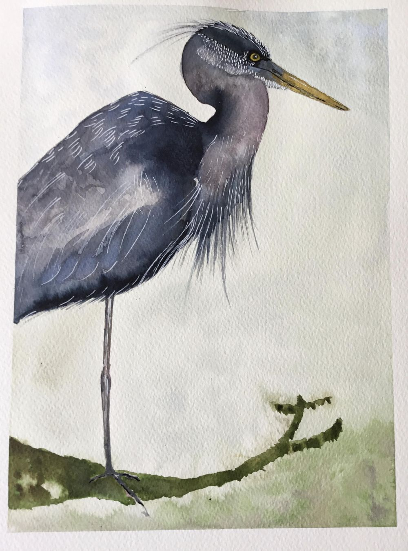 Vivid heron - image 5 - student project