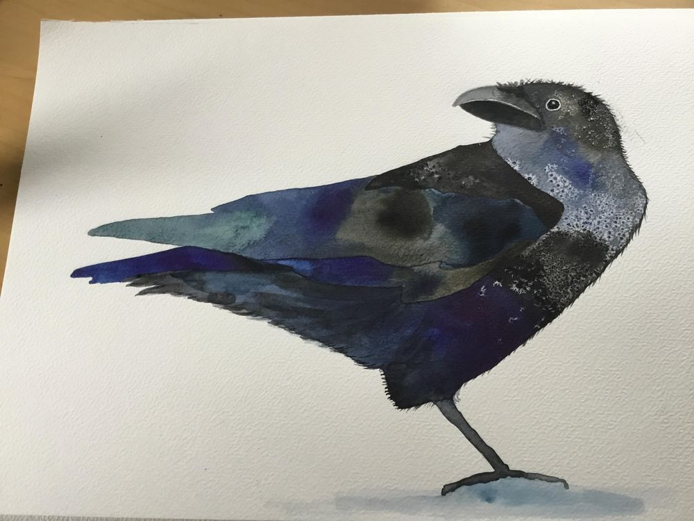 Gorgeous raven! - image 2 - student project