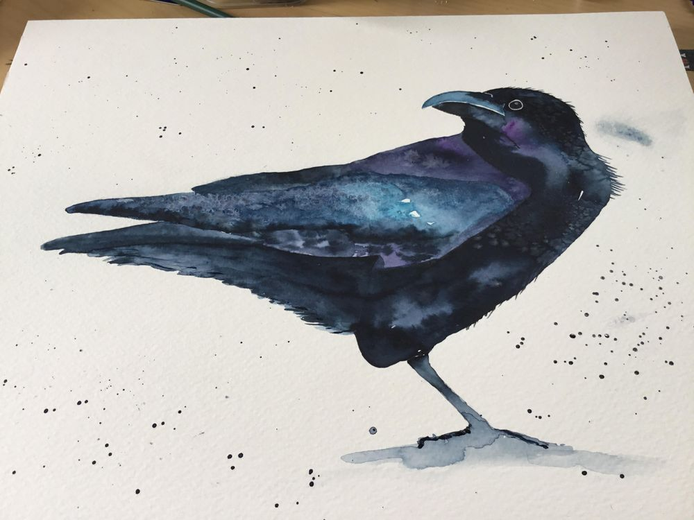 Gorgeous raven! - image 1 - student project