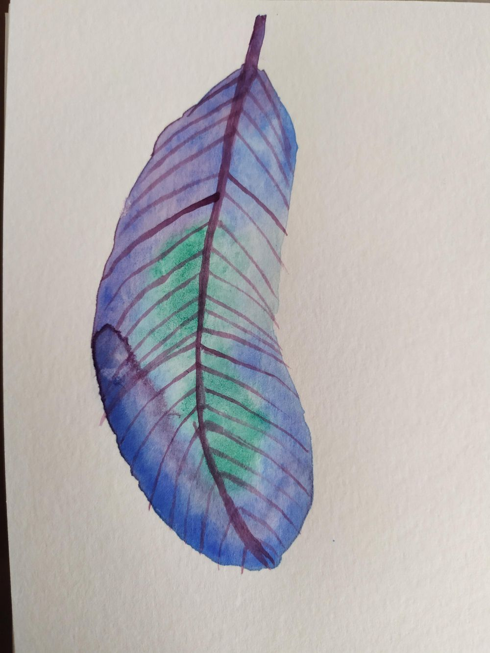 Beginner watercolours - image 2 - student project