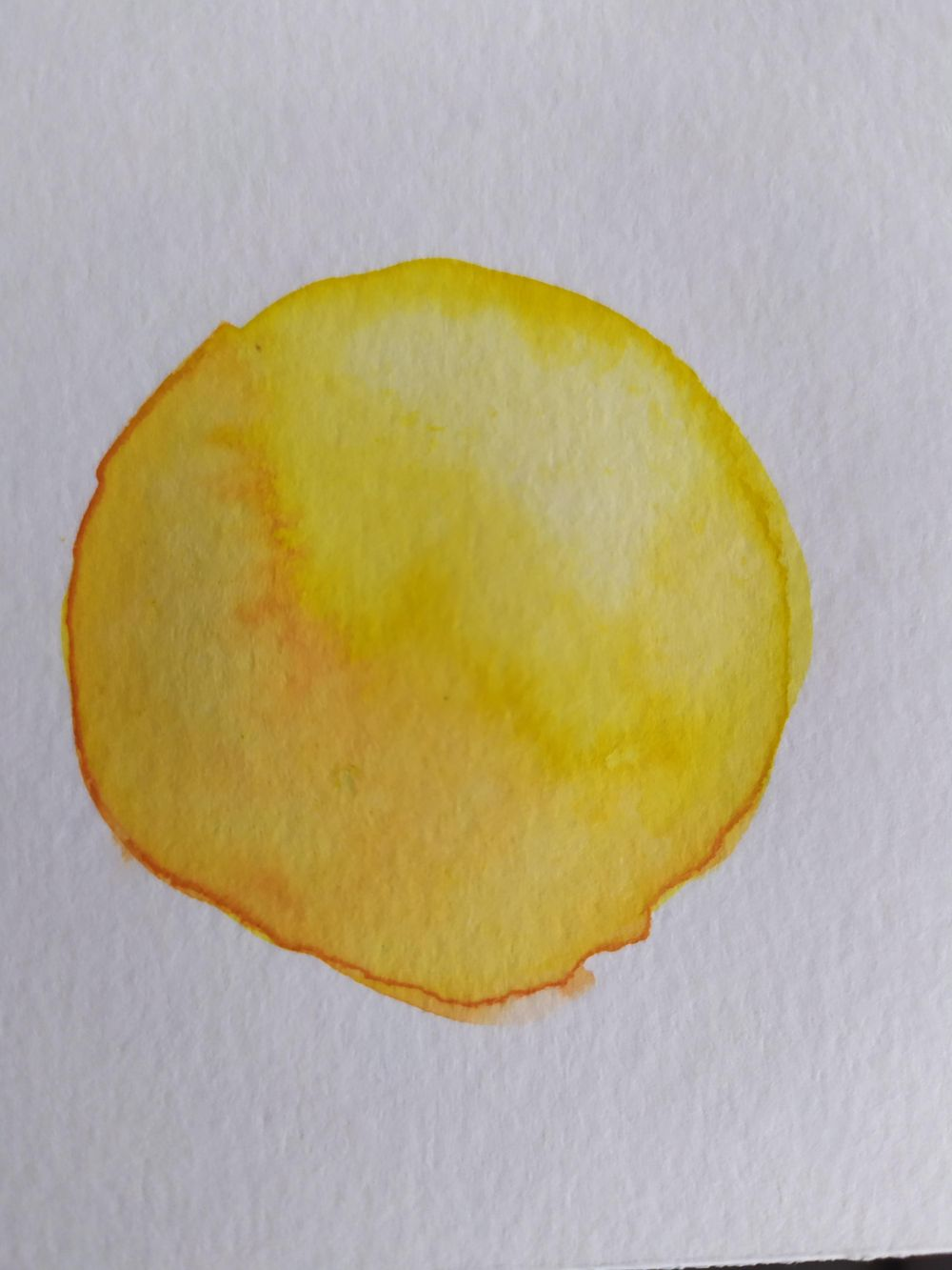 Beginner watercolours - image 3 - student project