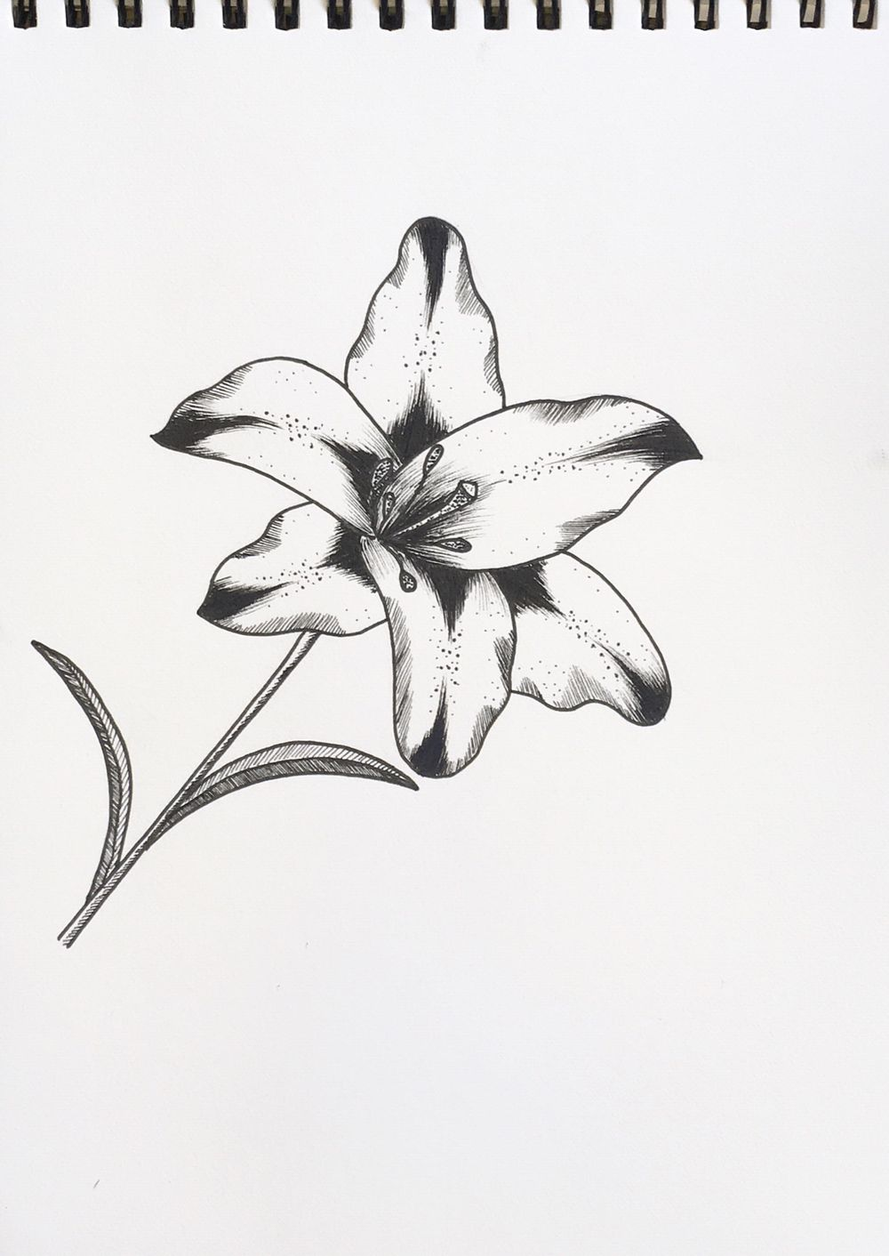 Ink Flowers - image 2 - student project