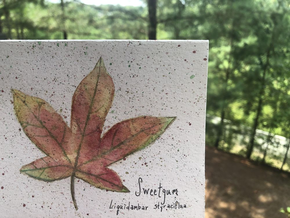 loose leaves - image 1 - student project