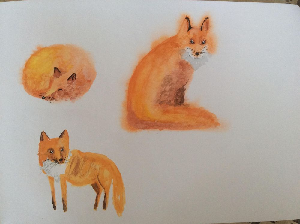 Struggling foxes - image 1 - student project