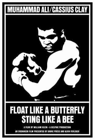 Float Like a Butterfly - image 1 - student project