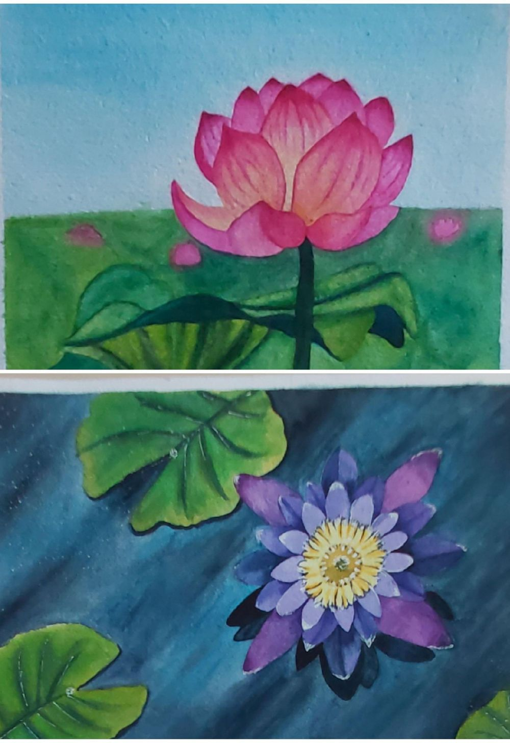 Pink & Purple Flowers - image 1 - student project
