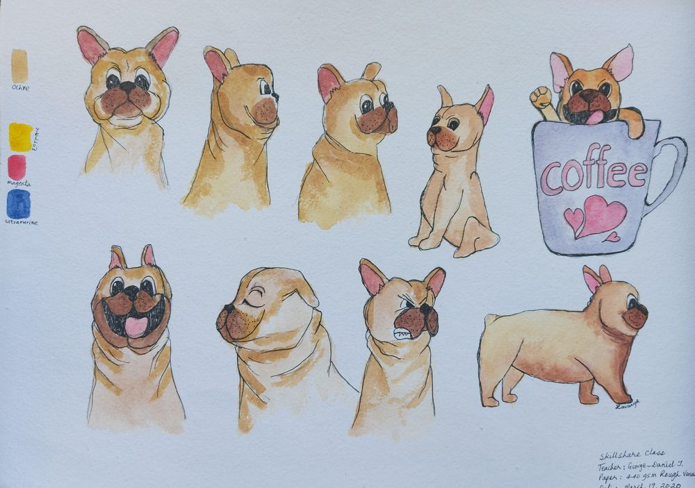Had Fun Drawing Pugs :) - image 1 - student project