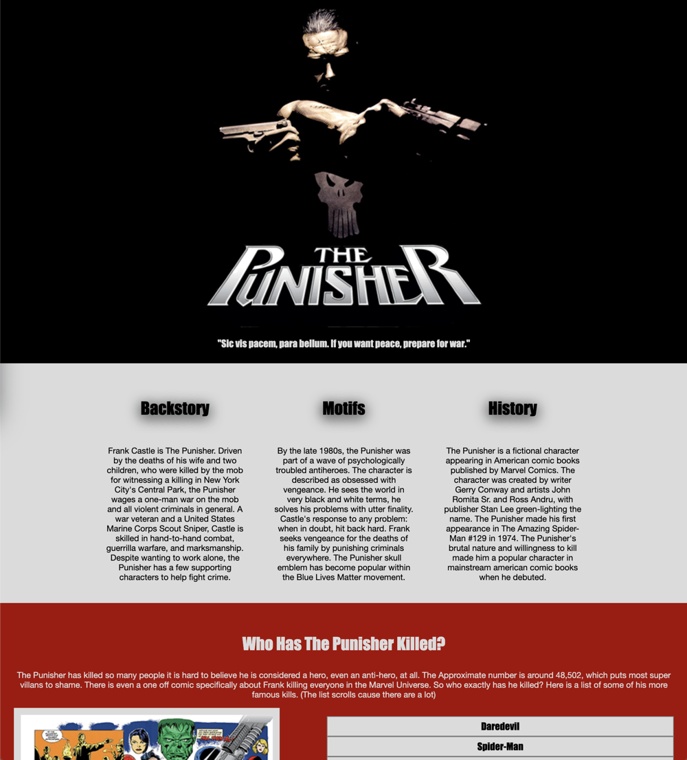 The Punisher - image 2 - student project