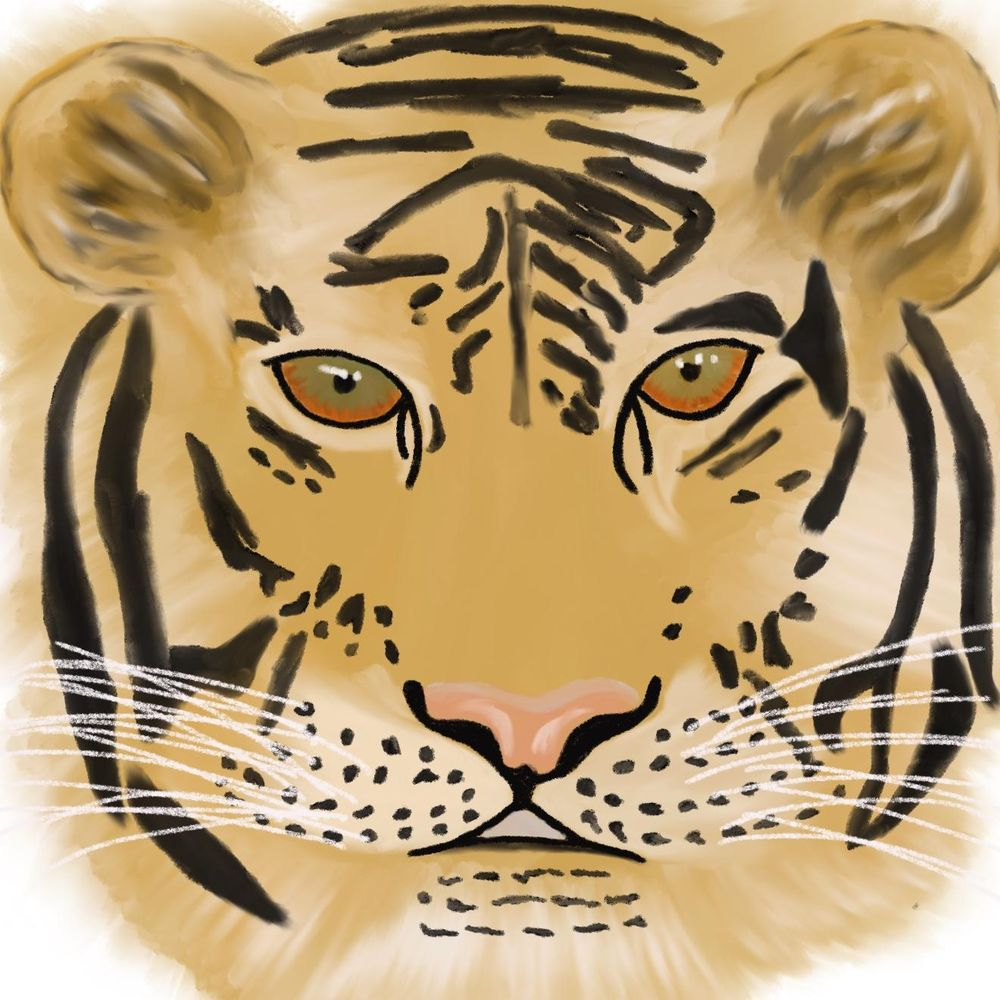 Tiger - image 5 - student project
