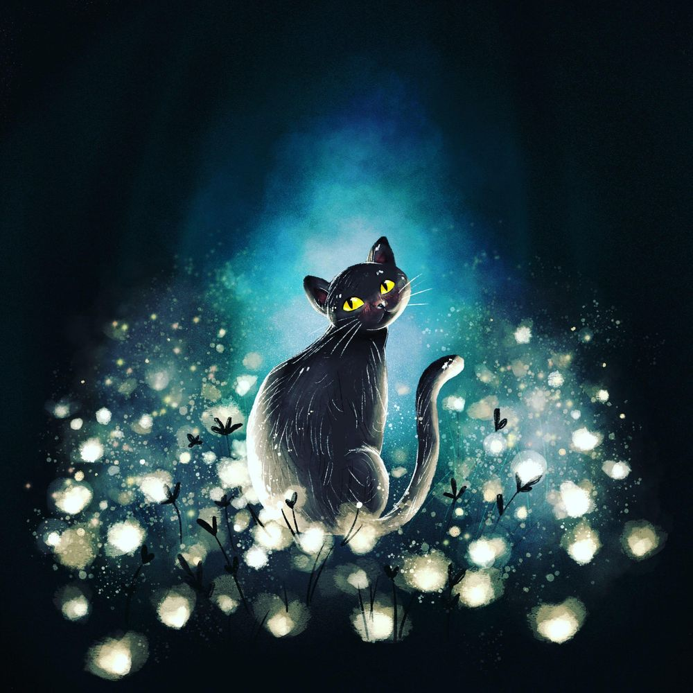 Magical cat - image 1 - student project