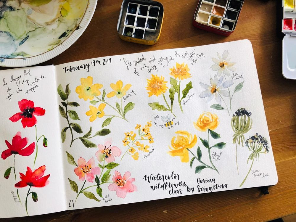 Wildflower studies - image 2 - student project