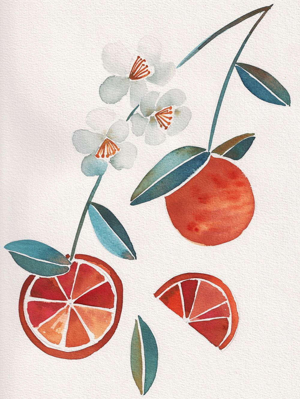 Summer fruits - image 1 - student project