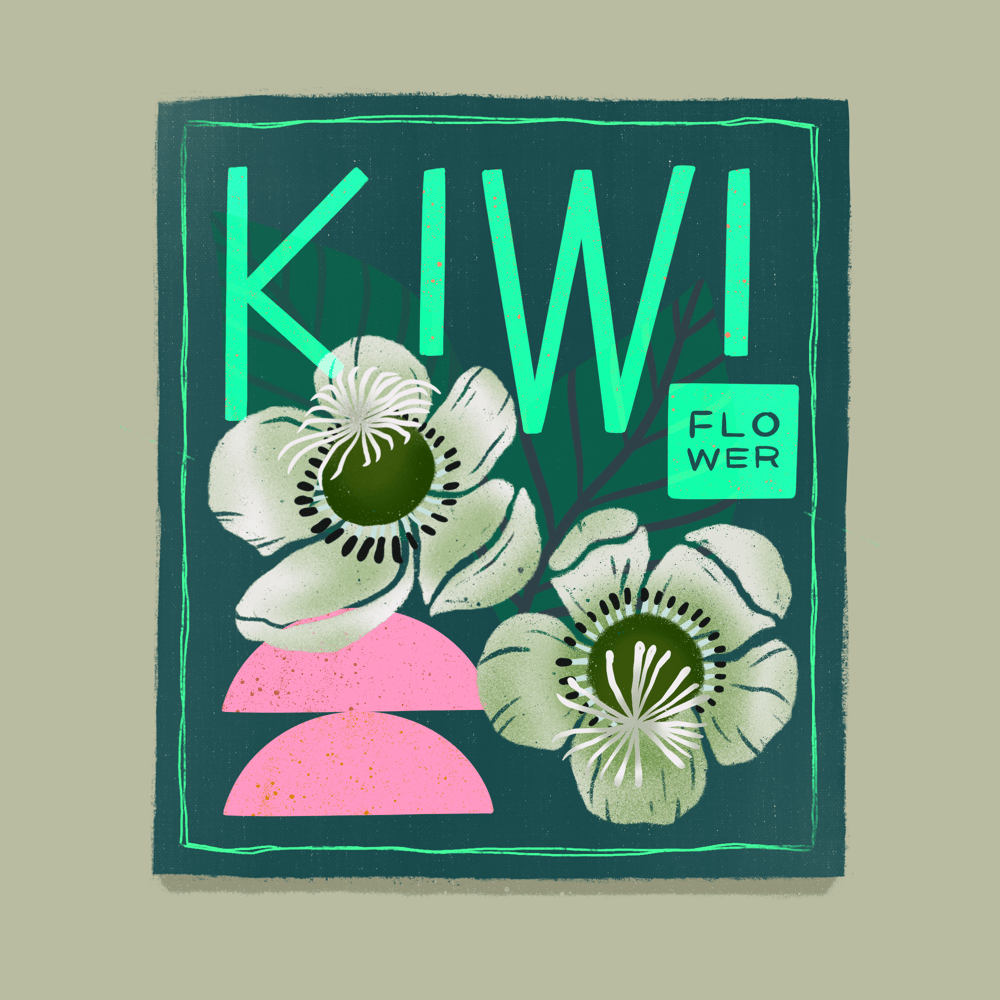 Seed Packet Illustrations - image 10 - student project