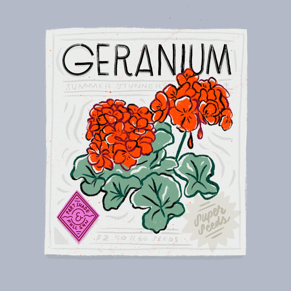 Seed Packet Illustrations - image 7 - student project