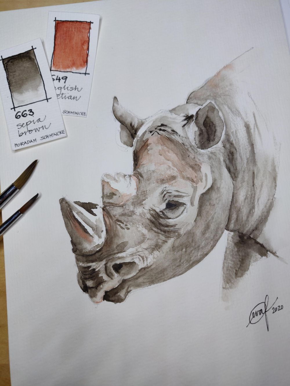 Class project: Rhinoceros - image 1 - student project