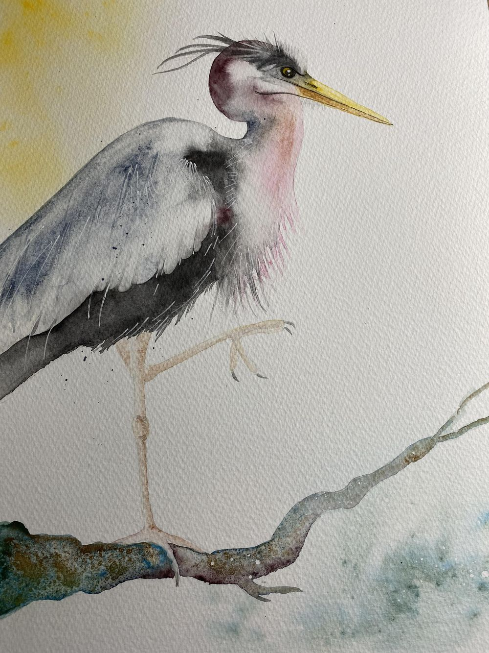 Mr Heron - image 1 - student project