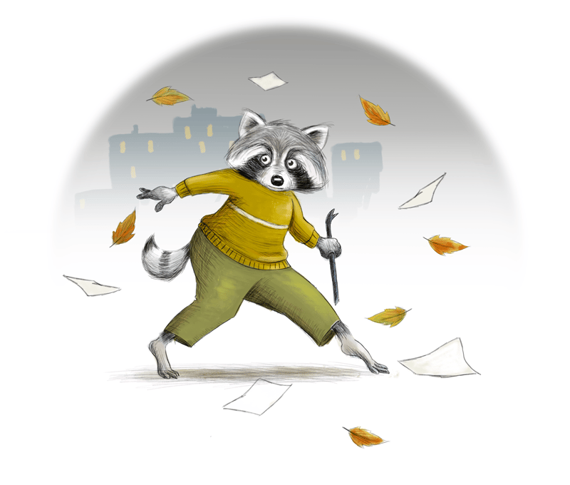Racoon - image 6 - student project
