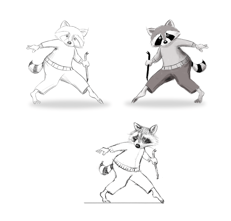 Racoon - image 3 - student project