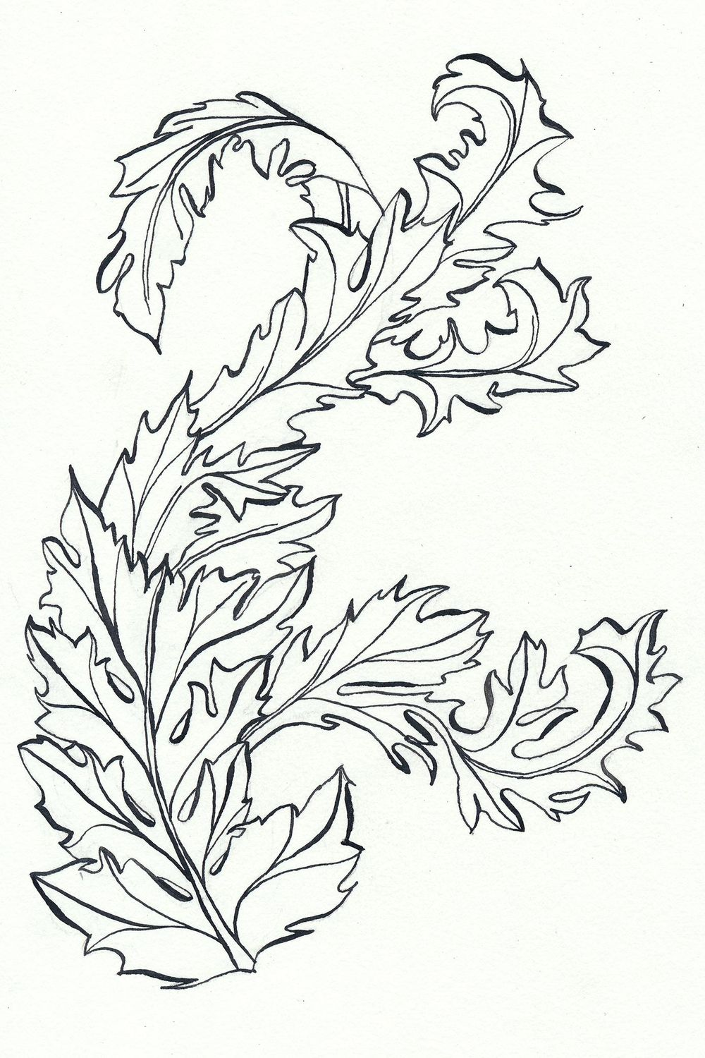 Acanthus scroll - image 1 - student project