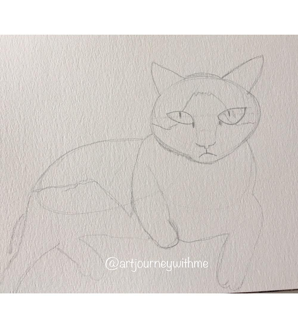 Cat on the move - image 2 - student project