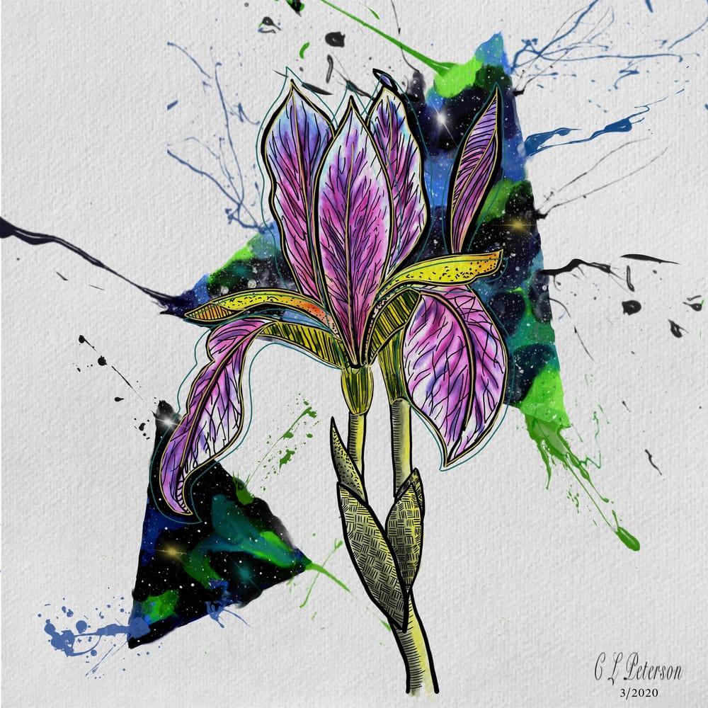 Watercolor Iris galaxy - on ipad - image 1 - student project