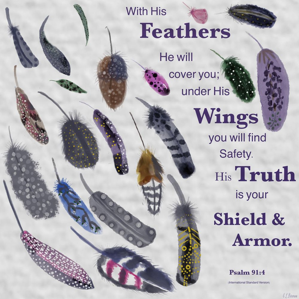 Feathers - Psalm 91:4 - image 1 - student project
