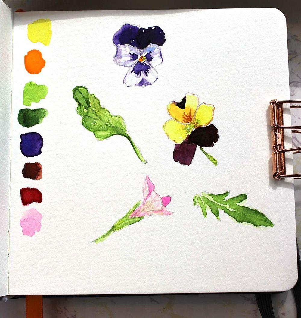Botanical Sketchbook Project - image 3 - student project