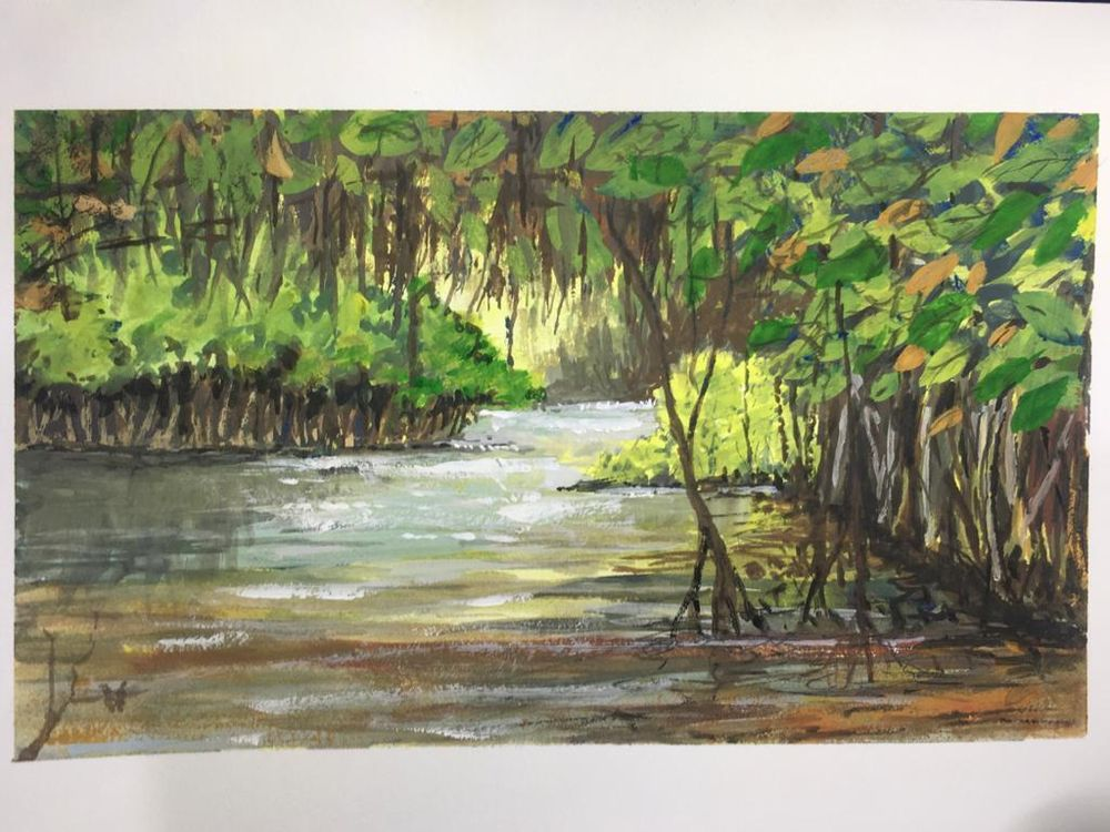 Mangrove forest in India - image 1 - student project
